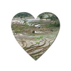 Rice Fields Terraced Terrace Heart Magnet