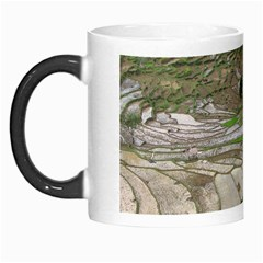 Rice Fields Terraced Terrace Morph Mugs