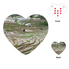 Rice Fields Terraced Terrace Playing Cards (heart)