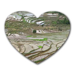 Rice Fields Terraced Terrace Heart Mousepads