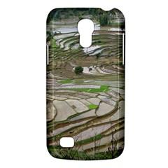 Rice Fields Terraced Terrace Galaxy S4 Mini