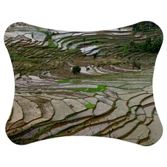 Rice Fields Terraced Terrace Jigsaw Puzzle Photo Stand (bow)