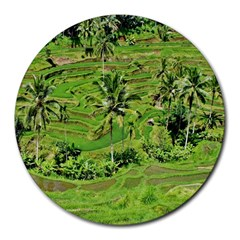 Greenery Paddy Fields Rice Crops Round Mousepads