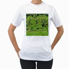 Greenery Paddy Fields Rice Crops Women s T Shirt (white) (two Sided)