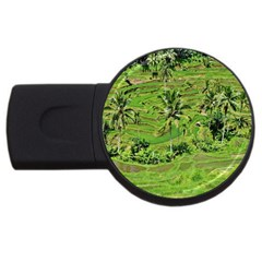 Greenery Paddy Fields Rice Crops Usb Flash Drive Round (2 Gb)