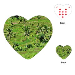 Greenery Paddy Fields Rice Crops Playing Cards (heart)