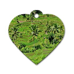 Greenery Paddy Fields Rice Crops Dog Tag Heart (two Sides)