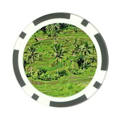 Greenery Paddy Fields Rice Crops Poker Chip Card Guard (10 Pack)