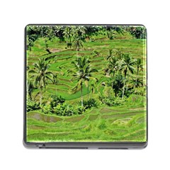 Greenery Paddy Fields Rice Crops Memory Card Reader (square)