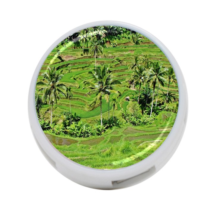 Greenery Paddy Fields Rice Crops 4-Port USB Hub (Two Sides)