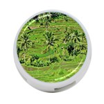 Greenery Paddy Fields Rice Crops 4-Port USB Hub (Two Sides)  Back
