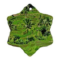 Greenery Paddy Fields Rice Crops Ornament (snowflake)