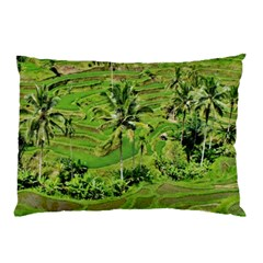 Greenery Paddy Fields Rice Crops Pillow Case (two Sides)
