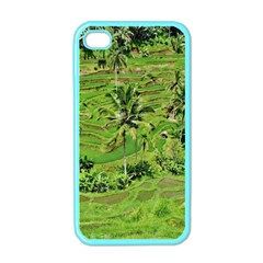 Greenery Paddy Fields Rice Crops Apple Iphone 4 Case (color)