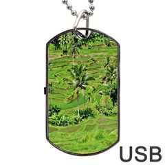 Greenery Paddy Fields Rice Crops Dog Tag Usb Flash (one Side)