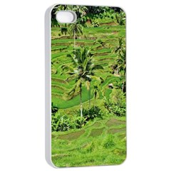 Greenery Paddy Fields Rice Crops Apple Iphone 4/4s Seamless Case (white)