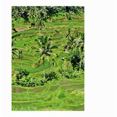 Greenery Paddy Fields Rice Crops Small Garden Flag (two Sides)