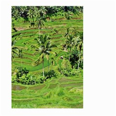 Greenery Paddy Fields Rice Crops Large Garden Flag (two Sides)