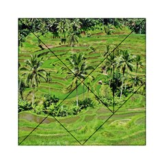 Greenery Paddy Fields Rice Crops Acrylic Tangram Puzzle (6  X 6 )
