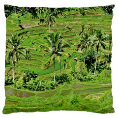 Greenery Paddy Fields Rice Crops Large Cushion Case (two Sides)