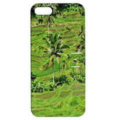 Greenery Paddy Fields Rice Crops Apple Iphone 5 Hardshell Case With Stand