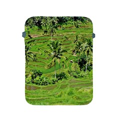 Greenery Paddy Fields Rice Crops Apple Ipad 2/3/4 Protective Soft Cases