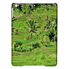 Greenery Paddy Fields Rice Crops Ipad Air Hardshell Cases