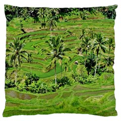 Greenery Paddy Fields Rice Crops Standard Flano Cushion Case (one Side)