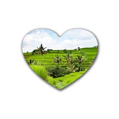 Bali Rice Terraces Landscape Rice Heart Coaster (4 Pack)