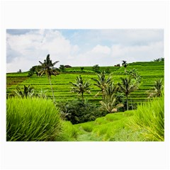 Bali Rice Terraces Landscape Rice Large Glasses Cloth
