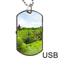 Bali Rice Terraces Landscape Rice Dog Tag Usb Flash (two Sides)