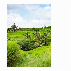Bali Rice Terraces Landscape Rice Small Garden Flag (two Sides)