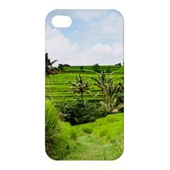 Bali Rice Terraces Landscape Rice Apple Iphone 4/4s Premium Hardshell Case