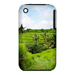 Bali Rice Terraces Landscape Rice Iphone 3s/3gs