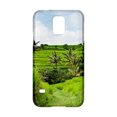 Bali Rice Terraces Landscape Rice Samsung Galaxy S5 Hardshell Case