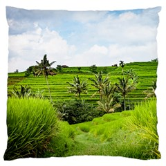 Bali Rice Terraces Landscape Rice Large Flano Cushion Case (two Sides)