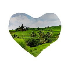 Bali Rice Terraces Landscape Rice Standard 16  Premium Flano Heart Shape Cushions