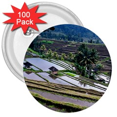 Rice Terrace Rice Fields 3  Buttons (100 Pack)
