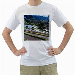 Rice Terrace Rice Fields Men s T Shirt (white) (two Sided)