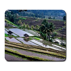Rice Terrace Rice Fields Large Mousepads