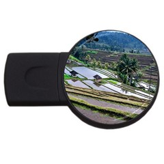 Rice Terrace Rice Fields Usb Flash Drive Round (4 Gb)