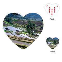 Rice Terrace Rice Fields Playing Cards (heart)