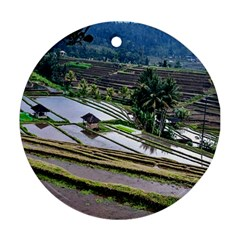 Rice Terrace Rice Fields Round Ornament (two Sides)