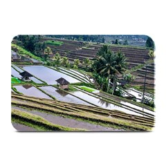 Rice Terrace Rice Fields Plate Mats