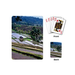 Rice Terrace Rice Fields Playing Cards (mini)