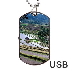 Rice Terrace Rice Fields Dog Tag Usb Flash (one Side)
