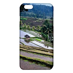 Rice Terrace Rice Fields Iphone 6 Plus/6s Plus Tpu Case