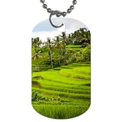 Rice Terrace Terraces Dog Tag (one Side)