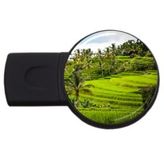 Rice Terrace Terraces Usb Flash Drive Round (2 Gb)
