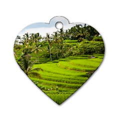 Rice Terrace Terraces Dog Tag Heart (two Sides)